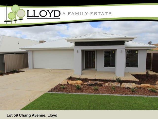 13 Chang Avenue, Lloyd, NSW 2650