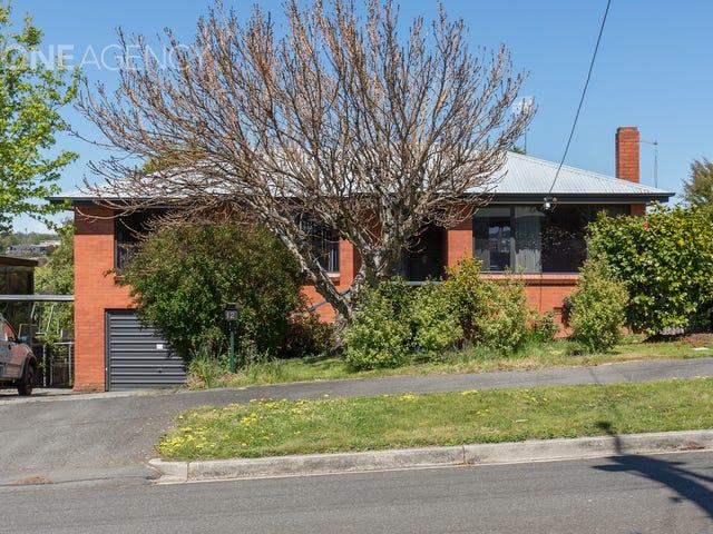 12 Van Diemen Avenue, Summerhill, Tas 7250