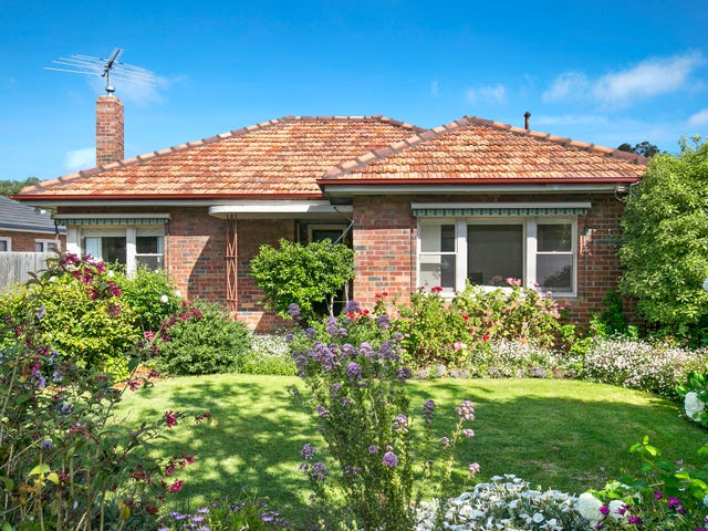 117 Minerva Road, Herne Hill, Vic 3218