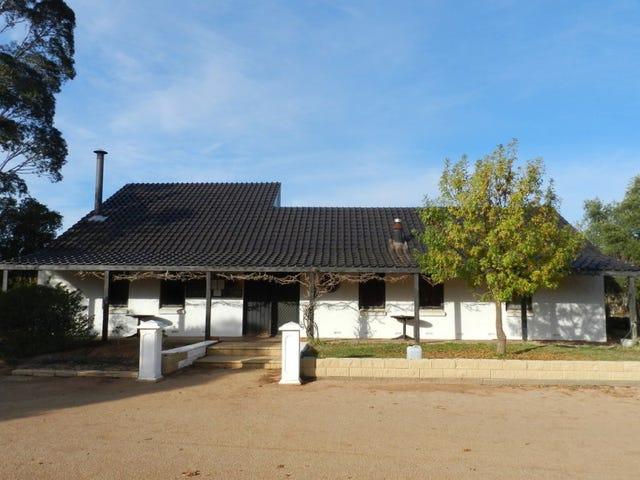 17366 Sturt Highway, Barmera, SA 5345