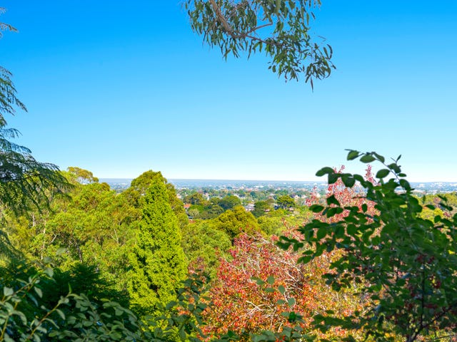 5/258 Pacific Highway, Greenwich, NSW 2065