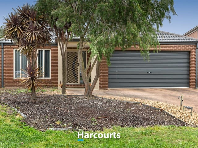 7 Cindy Court, Berwick, Vic 3806