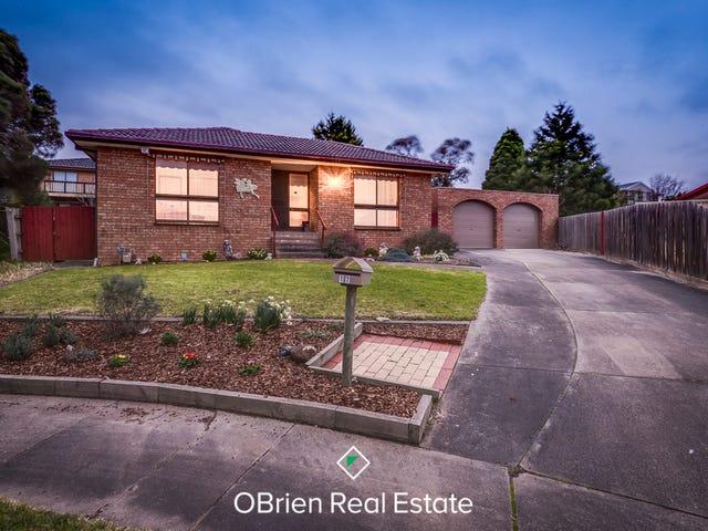 17 Quirk Court, Endeavour Hills, Vic 3802