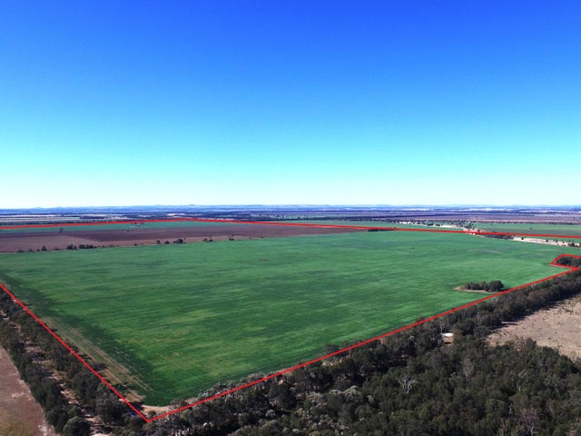 0 Campbells Road, Punchs Creek, Qld 4357