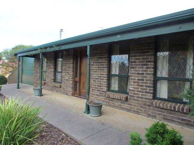 46 Michelmore Drive, Meadows, SA 5201