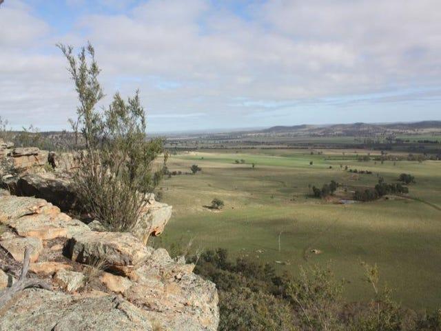 1690 Black Stump Way, Coolah, NSW 2843