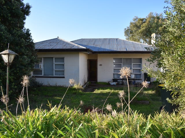 70 Williams Road, Millicent, SA 5280