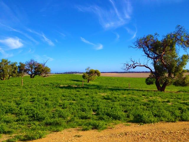 2104 Emu Flat Road, Keith, SA 5267