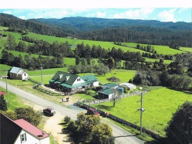 316 Lottah Road, Goulds Country, Tas 7216