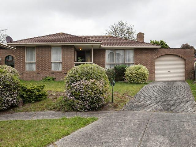 8 Rhonda Close, Endeavour Hills, Vic 3802