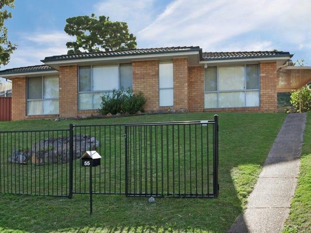 55 Taree Avenue, Telarah, NSW 2320