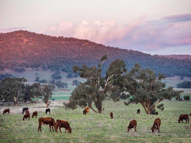 Stage Three Bombira Estate, Mudgee, NSW 2850