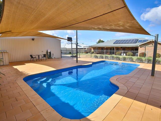20 Katrina Court, Gol Gol, NSW 2738