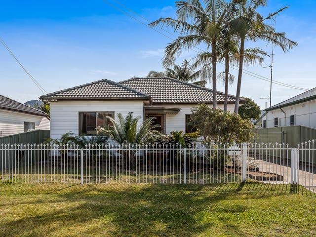 58 Donald Street, Fairy Meadow, NSW 2519