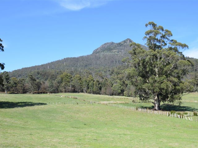 13364 Highland Lakes Rd, Golden Valley, Tas 7304