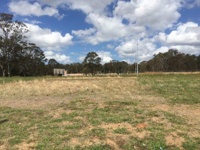 13 Doubletail Lane, Denham Court, NSW 2565