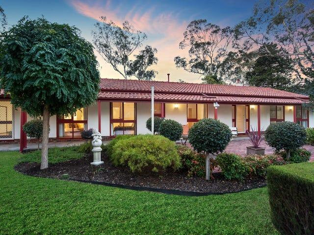 66 Bowen Road, Tea Tree Gully, SA 5091