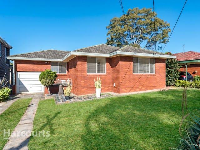 9 Goodwin Avenue, Mount Lewis, NSW 2190