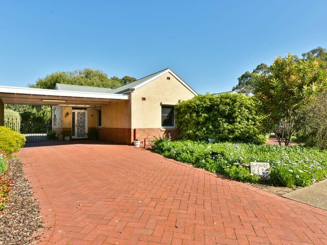 10 Coolah Terrace, Marion, SA 5043