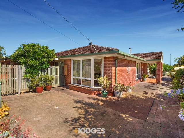 41 Colac Grove, Belmont, Vic 3216