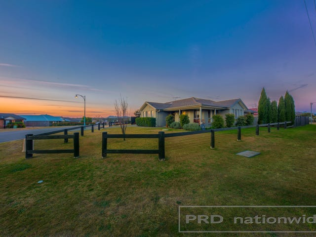 35 Poplar Level Terrace, Branxton, NSW 2335