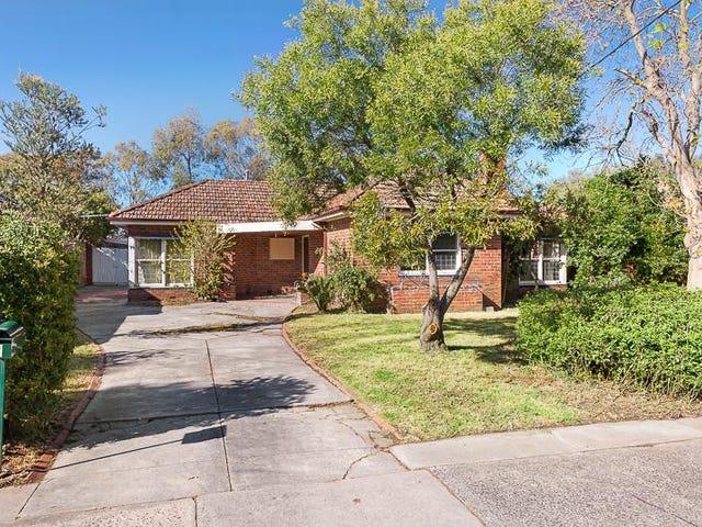 8 Rosemary Grove, Glen Iris, Vic 3146