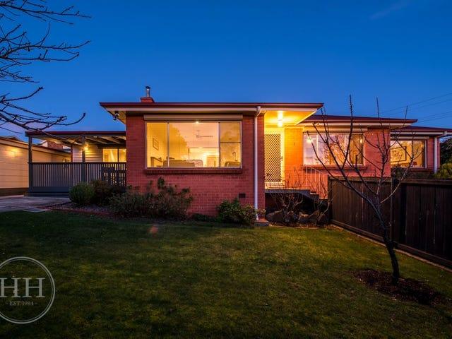 1 Van Diemen Avenue, Summerhill, Tas 7250