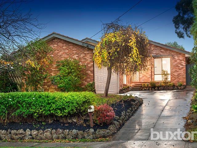 47 Smyth Street, Mount Waverley, Vic 3149