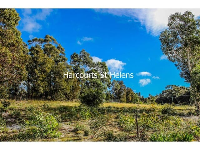 5 Longhill Place, St Helens, Tas 7216