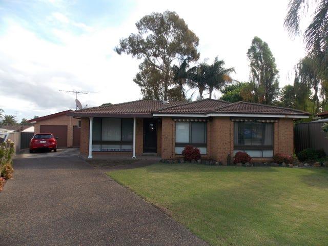 16 Carpenter Place, Minchinbury, NSW 2770