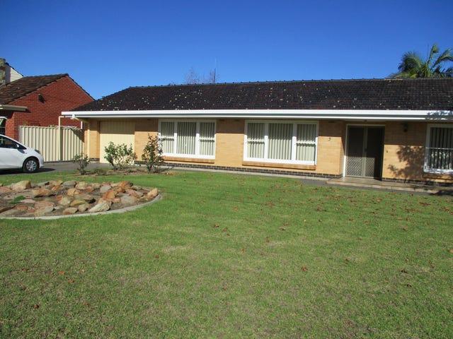 3 Pitcairn Avenue, Novar Gardens, SA 5040