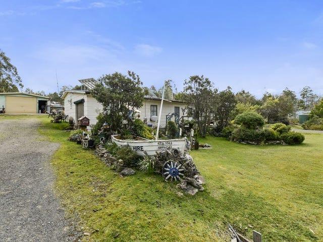 272 Bradys Lake Road, Bradys Lake, Tas 7140
