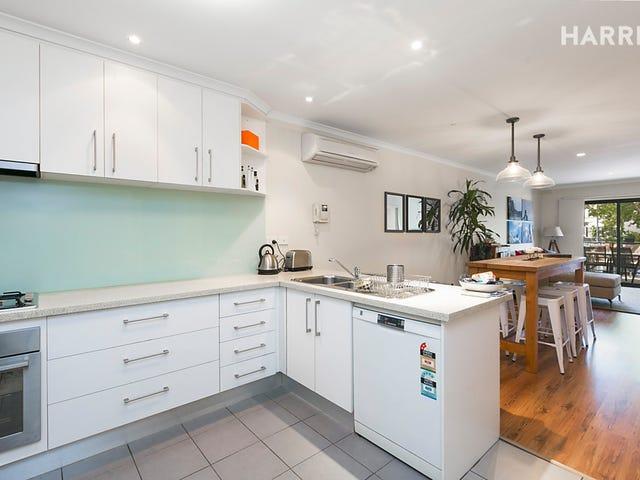 5/466 Pulteney Street, Adelaide, SA 5000