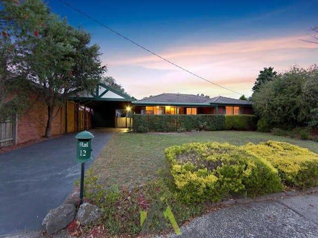 12 Milne Court, Langwarrin, Vic 3910