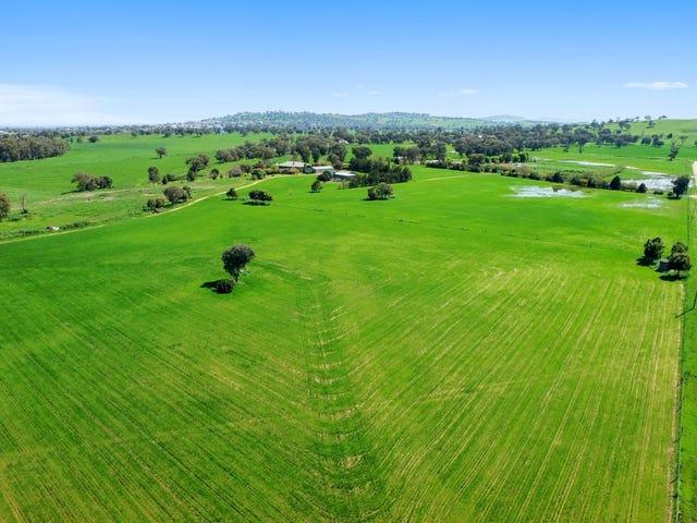 Springfield -  46 Carro Park Road, Cowra, NSW 2794