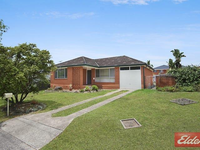 254 Metella Road, Toongabbie, NSW 2146