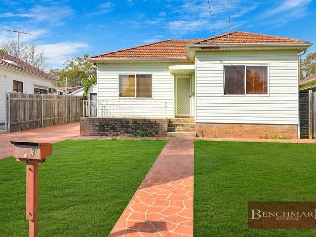 3 Martin St, Roselands, NSW 2196