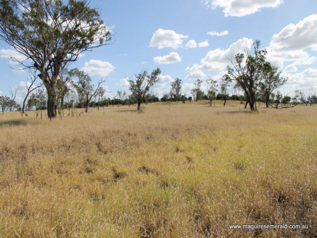 "0 ""Salt Springs"", Capella, Qld 4723"