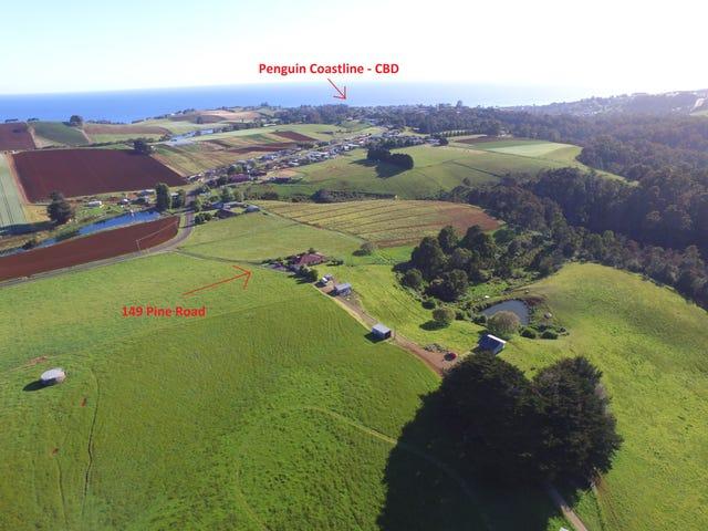 149 Pine Road, Penguin, Tas 7316