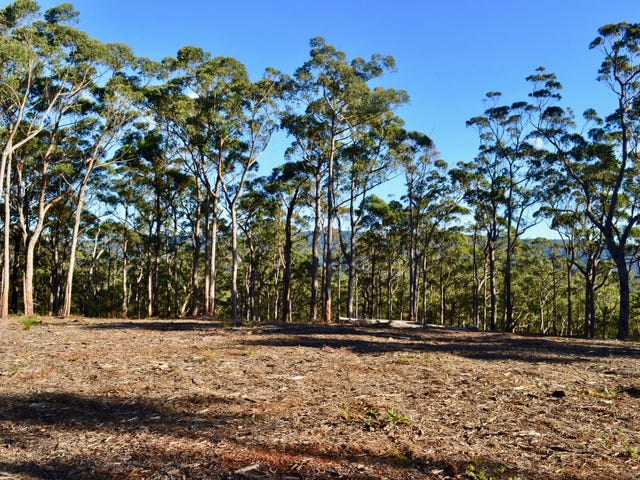 Lots 6,7,8 Little Forest Road, Little Forest, NSW 2538