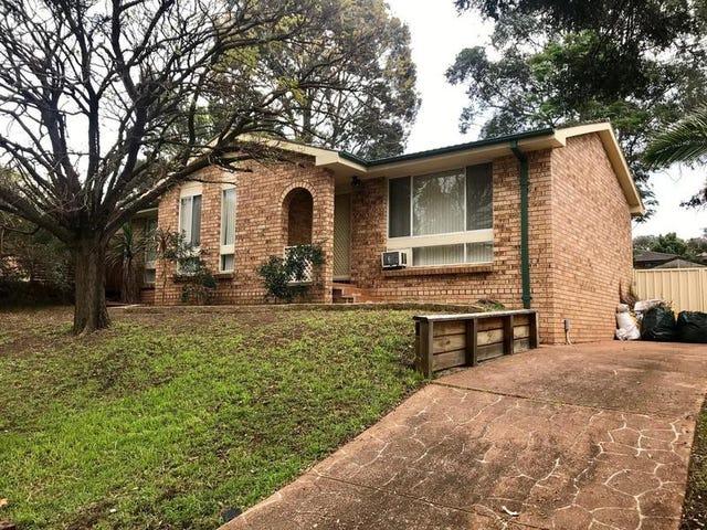 5 Shiraz Place, Eschol Park, NSW 2558