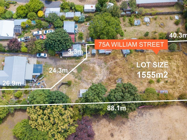 75A William Street, Westbury, Tas 7303