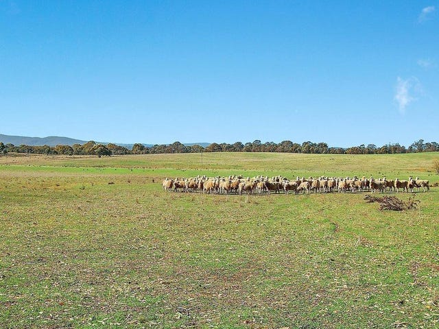 Proposed Lot 2, 528 Back Creek Road, Gundaroo, NSW 2620