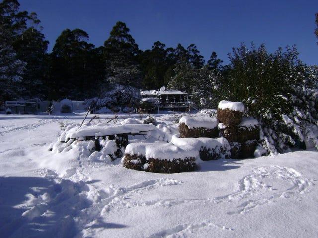 134 Tiers View Road, Golden Valley, Tas 7304