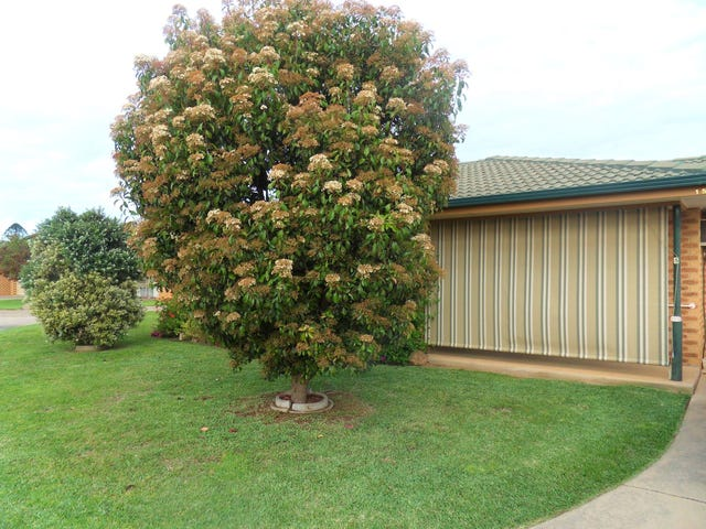 15/160 Forsyth Street, Wagga Wagga, NSW 2650
