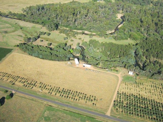 490 Buckland Valley Road, Buckland, Vic 3740