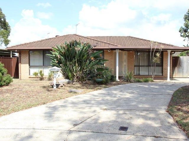 4  Petrel Place, Hinchinbrook, NSW 2168
