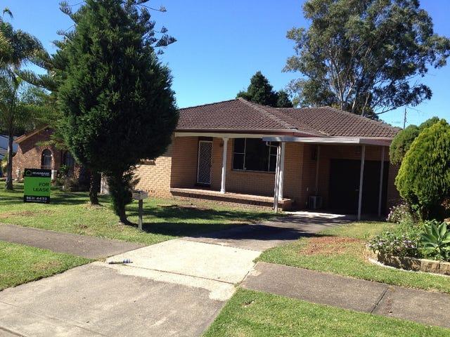 119 Beechwood Avenue, Greystanes, NSW 2145