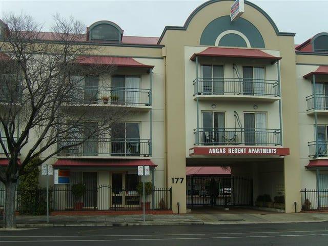 17/177 Angas Street, Adelaide, SA 5000