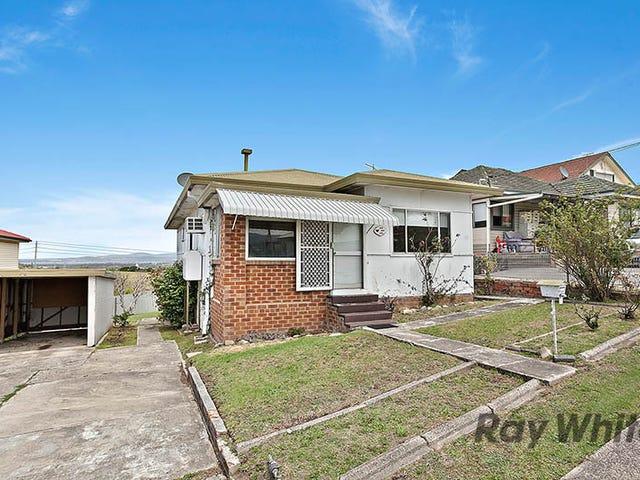 111 Farmborough Rd, Farmborough Heights, NSW 2526